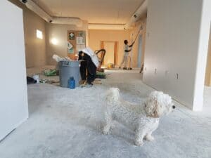 Make Sure You Aren't Making These Home Renovation Mistakes
